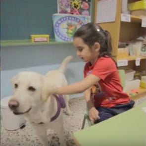Eduación inclusiva con perros