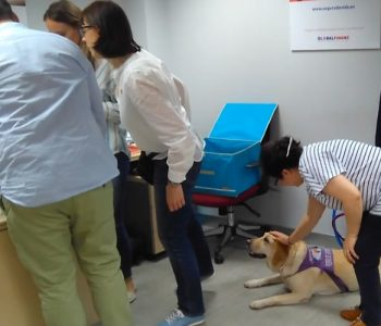 perros en el trabajo (1)